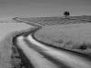 1306-mejean-route-lv